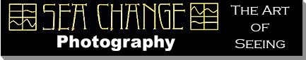 Sea Change Photo Logo